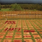 poolparty odena13